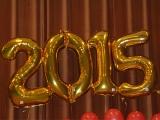 Цифра 2015, золото