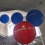 Большой шар с логотипом
