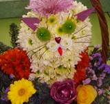 Котик из цветов в корзине