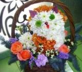 """Фигура из цветов """"Котик в корзине"""""""