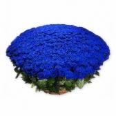 """Подарочная корзина """"501 синяя роза"""""""